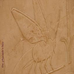 The Pharaoh's Bee
